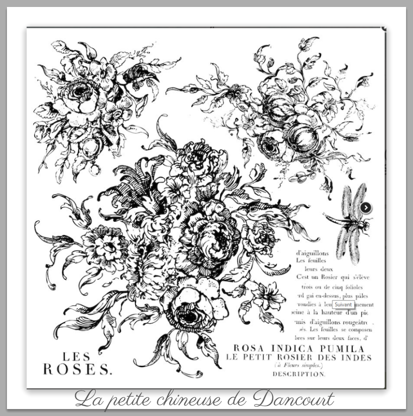 Tampon Iron Orchid Designs (IOD) Rose toile